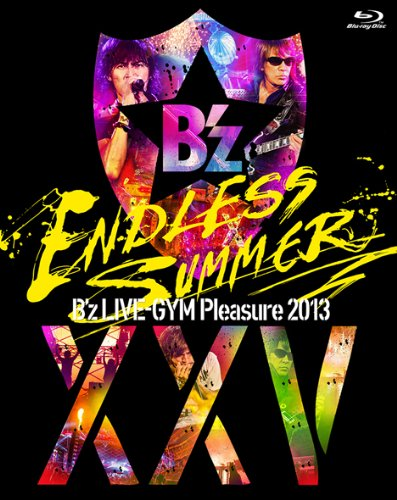 Bz live gym pleasure 2013 endless summer xxv best