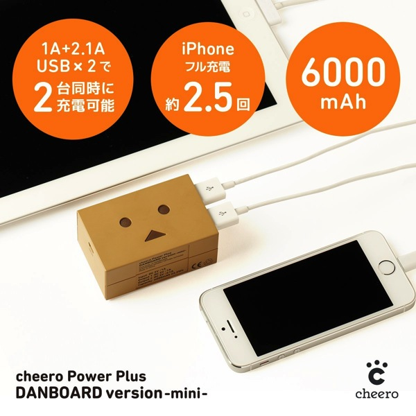 Danboard battery mini 03